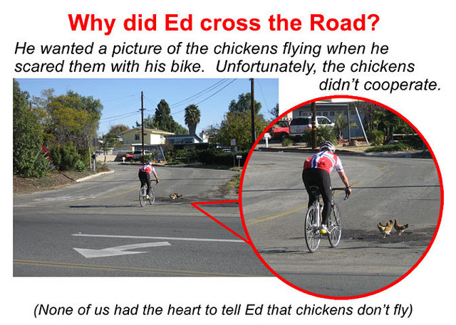 Why did Ed Cross the road?
